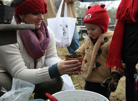 Janna Muery (left) helps her 20-month-old son, Mahon, put together a potted plant at Farm Day at Mission San Juan on Saturday, Nov. 15, 2014. Farm Day featured various activities for guests to learn about how agriculture at the mission took root. Docents and National Park Service personnel showed various aspects of life at the mission that involved farming, raising animals and the development of an irrigation system. One of the highlights was a tour of the working acequia that is currently used to irrigate land around the mission as officials hope to grow and harvest crops on the land. Photo: Kin Man Hui, San Antonio Express-News / ©2014 San Antonio Express-News