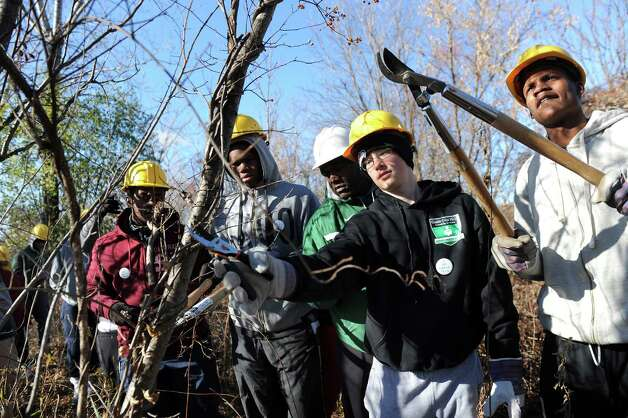 The Green Tech High varsity basketball team works to cut invasive vines during a youth volunteer event on Saturday, Nov. 15, 2014, at the Corning Preserve in Albany, N.Y. With the City of Albanya€™s authorization, they cut the Oriental Bittersweet and other vines that are choking out trees in the riverfront preserve. (Cindy Schultz / Times Union) Photo: Cindy Schultz / 00029445A