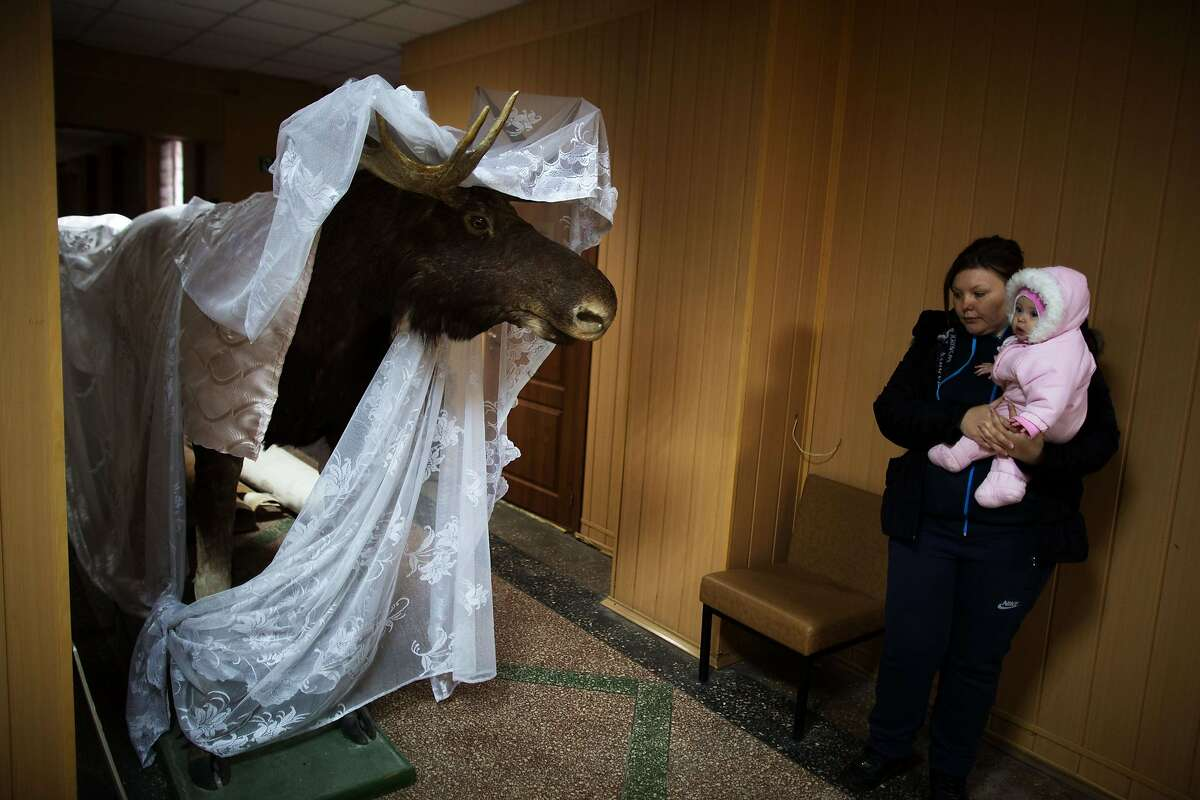 TOPSHOTS A woman carrying her baby watches a covered stuffed moose at Donetsk's museum on November 14, 2014 as dozens of people volunteered to be part of aid organization
