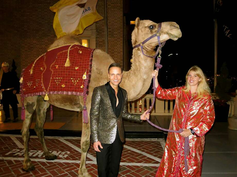 Designer Ken Fulk (left) with Humphry the Camel at the Top of the Mark 75th celebration. Nov 2014. By Catherine Bigelow. Photo: Catherine Bigelow, Special To The Chronicle