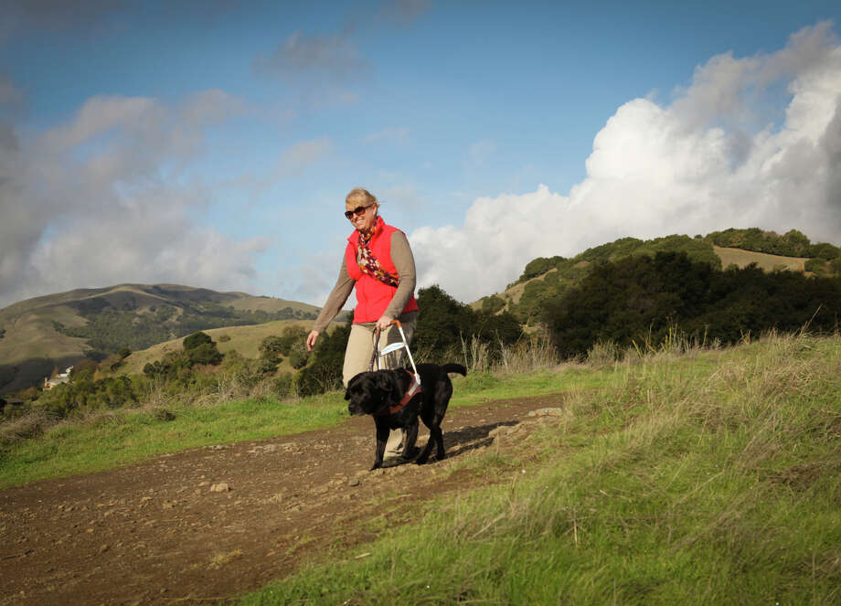 Theresa Stern of Guide Dogs for the Blind walks the trails with her guide dog, Dario. Photo: Morry Angell / Guide Dogs For The Blind / ONLINE_YES
