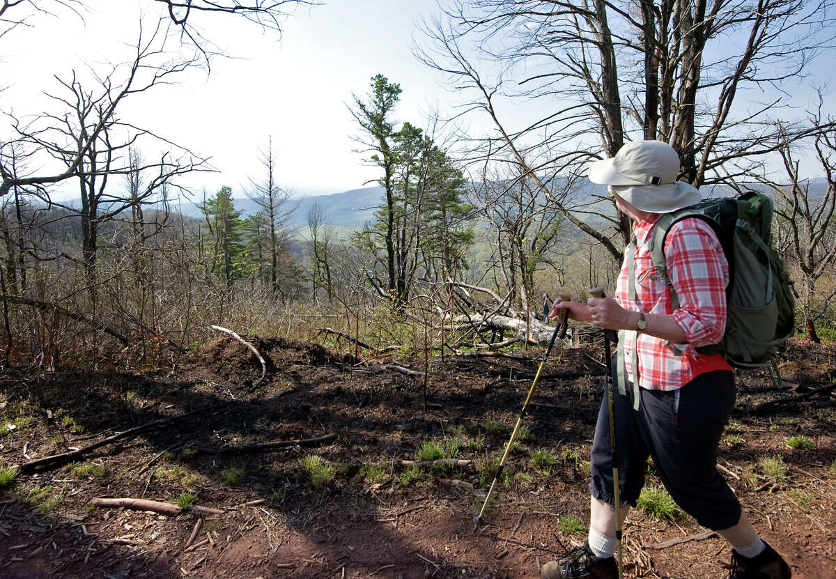 A hiker walks the Mines Run Trail on Virginia's Shenandoah Mountain in the George Washington National Forest. A new compromise reverses an outright ban on hydraulic fracturing that was proposed in 2011.