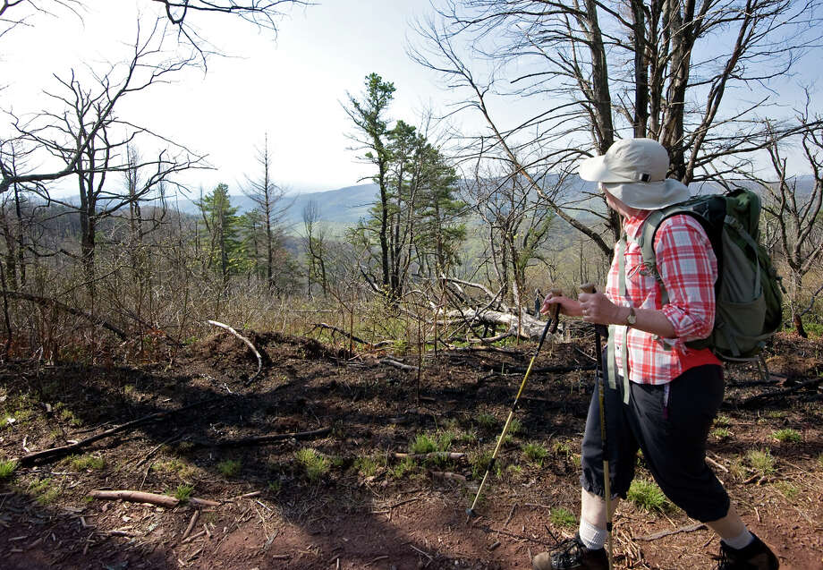 A hiker walks the Mines Run Trail on Virginia's Shenandoah Mountain in the George Washington National Forest. A new compromise reverses an outright ban on hydraulic fracturing that was proposed in 2011. Photo: Nikki Fox / Associated Press / Daily News-record