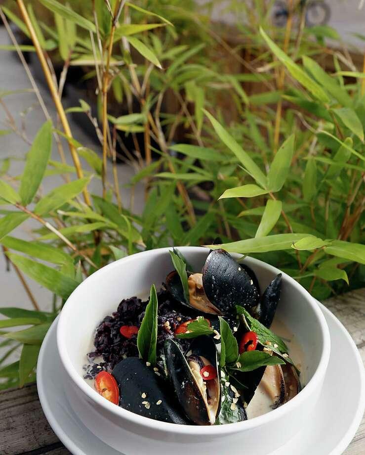 Naderi brings solid pan asian fare to heights newstimes for Asian cuisine mohegan lake menu
