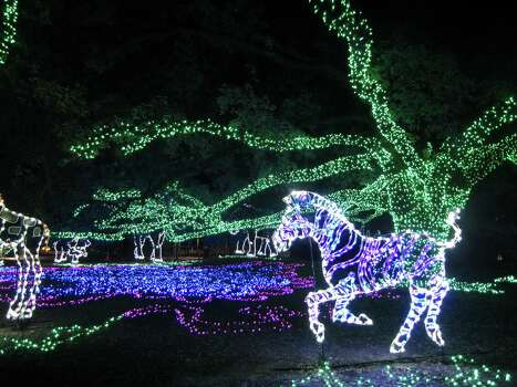 3. Zoo LightsNow through Jan. 4 (closed Dec. 24-25)This attraction at the Houston Zoo features more than 2 million sparkling lights, life-size animal sculptures, strolling carolers and a walk-through snow globe. New this year will be a completely lit African Forest with larger-than-life glowing ornaments. While enjoying the lights, visitors can warm themselves with spiked hot chocolate, wine and beer. For kids, there's pizza, funnel cakes and s'mores.When: 6-10 p.m. Friday-Jan. 4 (closed Dec. 24-25)Where: 6200 Hermann Park DriveTickets: $10.95-$14.95; last entry at 9 p.mInformation: houstonzoo.org Photo: Syd Kearney