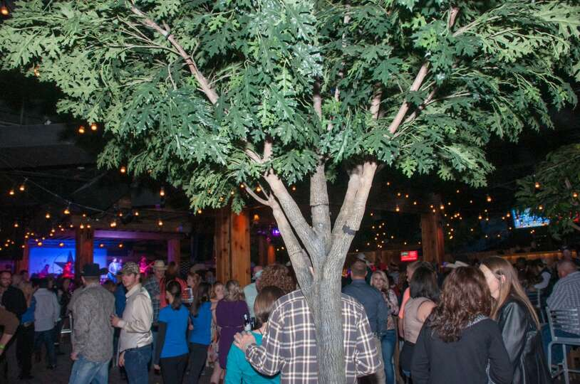 opening night at jerry nelson 39 s hill country backyard