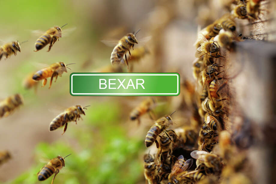 "Contrary to the sound of it, Béxar does not translate to its homophone. Historians track Bexar to an old Moorish fort Bejar, rooted in a word for ""bees"" or ""land of bee hives.""  Photo: Zhang Bo, Getty Images / (c) zhang bo"