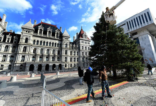 Workers from the NYS OGS-Grounds string some of the 2400 lights on the State Holiday Tree Thursday morning, Nov. 20, 2014, on the Empire State Plaza in Albany, N.Y. The lights will turned on Dec. 7th at 5:15 p.m. during a special event. (Skip Dickstein/Times Union) Photo: SKIP DICKSTEIN, ALBANY TIMES UNION