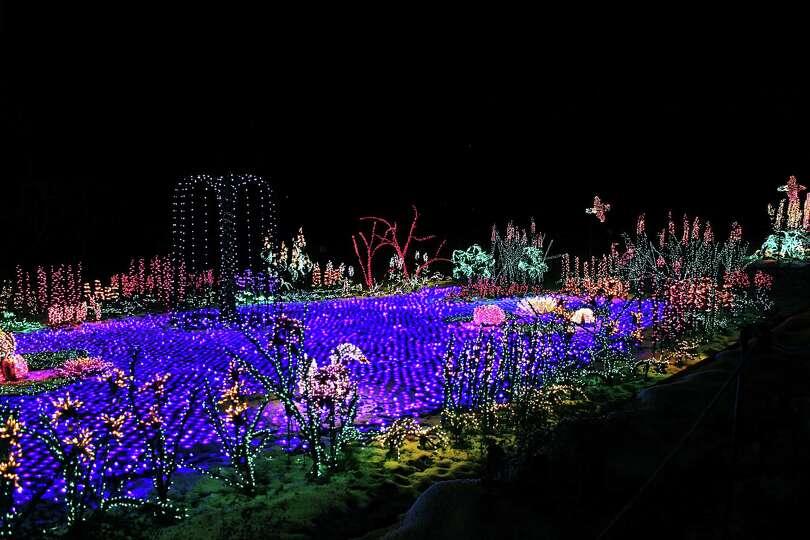 Garden d 39 lights through jan 3 photo for Bellevue botanical garden lights