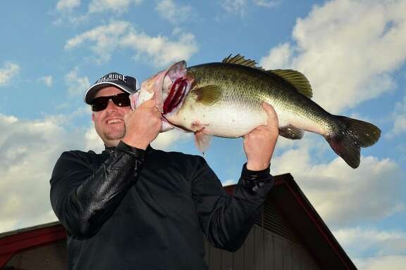 Angler David Roulston of Frisco landed this 13.88-pound largemouth from Lake Fork on Nov. 20 and donated the fish to the state's ShareLunker program.