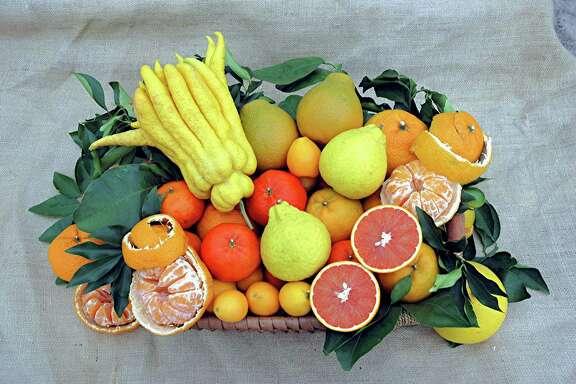 Fruit tree events fill the garden calendar.