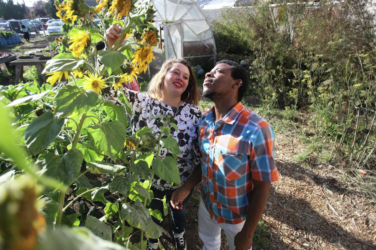 Darius Rucker and Bridjett Torres, both of Brentwood visit the farm and walk around the garden at Urban Adamah.