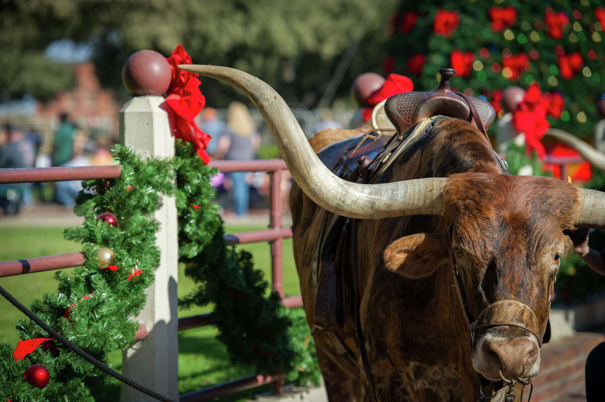 Fort Worth: Like nothing else in Texas, Christmas in the Stockyards combines longhorns, a parade, live music, Christmas tree lighting and caroling, Cowboy Santa pictures and more. Stockyards events Dec. 6, 12-5 p.m. Free. East Exchange Avenue