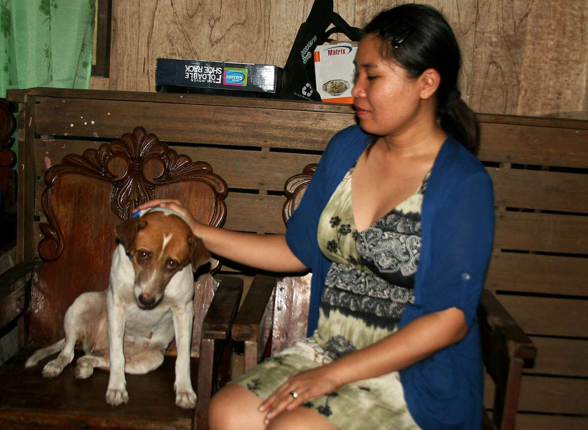LOST TYPHOON DOG FOUND A YEAR LATER: In Tacloban City, Philippines, Ailyn Metran pets her 9-year-old mutt, Bunny, who went missing in the chaos following Super Typhoon Haiyan a year ago. Bunny survived the giant waves of the storm surge, but she had to be left behind when Metran's family was forced to leave in the upheaval that followed the storm. When they returned, Bunny was gone. Metran said she and her husband found the emaciated pet rooting through a trash bin in Tacloban last month. When they called out her name, she came right away, wanting to be picked up and cradled.