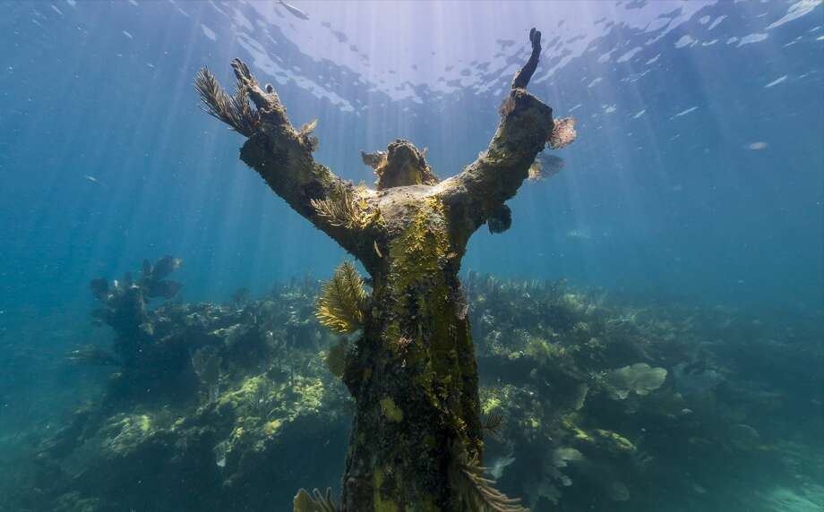Christ of the Abyss, Florida Keys Photo: Fechter,  Joshua I, Google Views
