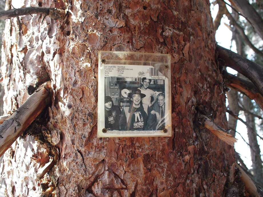 Among the shrines hidden around Aspen, a photo of Texas musician Stevie Ray Vaughan is tucked in the trees on Ajax Mountain. Photo: Handout, HO / Austin American-Statesman
