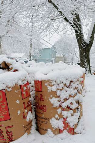 Lawn bags along Oregon Ave. are covered with snow during a snow storm on Wednesday, Nov. 26, 2014 in Schenectady, N.Y. (Lori Van Buren / Times Union) Photo: Lori Van Buren / 00029647A