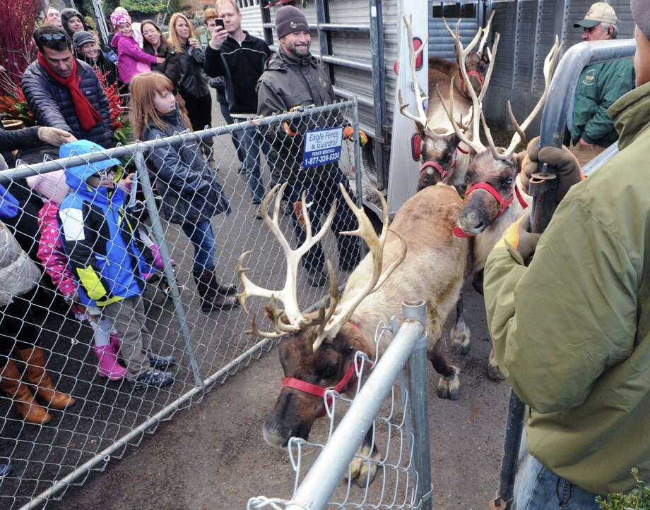 Greenwich Reindeer Festival Santa 39 S Workshop Greenwichtime