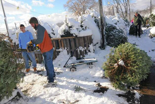 Justin Listman, left, of Bethlehem scores the trunk of a Christmas Tree with a chainsaw at the Hewitt's on Thursday Nov. 28, 2014 in Glenmont, N.Y. (Michael P. Farrell/Times Union) Photo: Michael P. Farrell / 00029596A