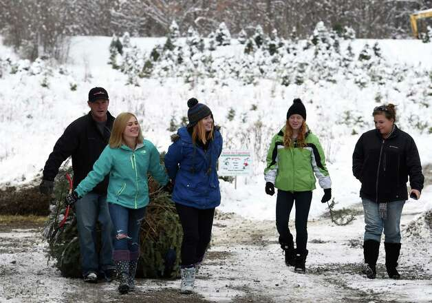 The Norris family from Malta drag a freshly cut Christmas tree from the field of the Goode Tree Farm Friday morning Nov. 28, 2014 in Ballston Spa, N.Y.    The Norris' from left to right; Dad, Bill;  Julia, 20;  Emily, 17;  Sarah, 15 and mom, Sharon.      (Skip Dickstein/Times Union) Photo: SKIP DICKSTEIN / 00029956A