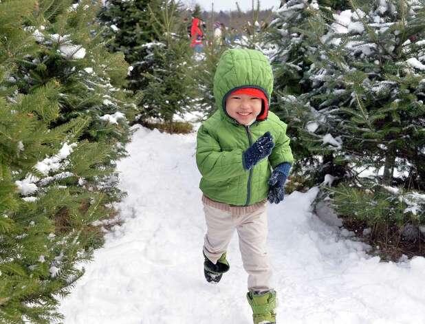 Three-year-old Evan Paik of Clifton Park races through a Christmas tree maze before Santa Claus parachutes onto the EllmsO Christmas Tree Farm Saturday Nov. 29, 2014.  (John Carl D'Annibale / Times Union) Photo: John Carl D'Annibale / 00029634A