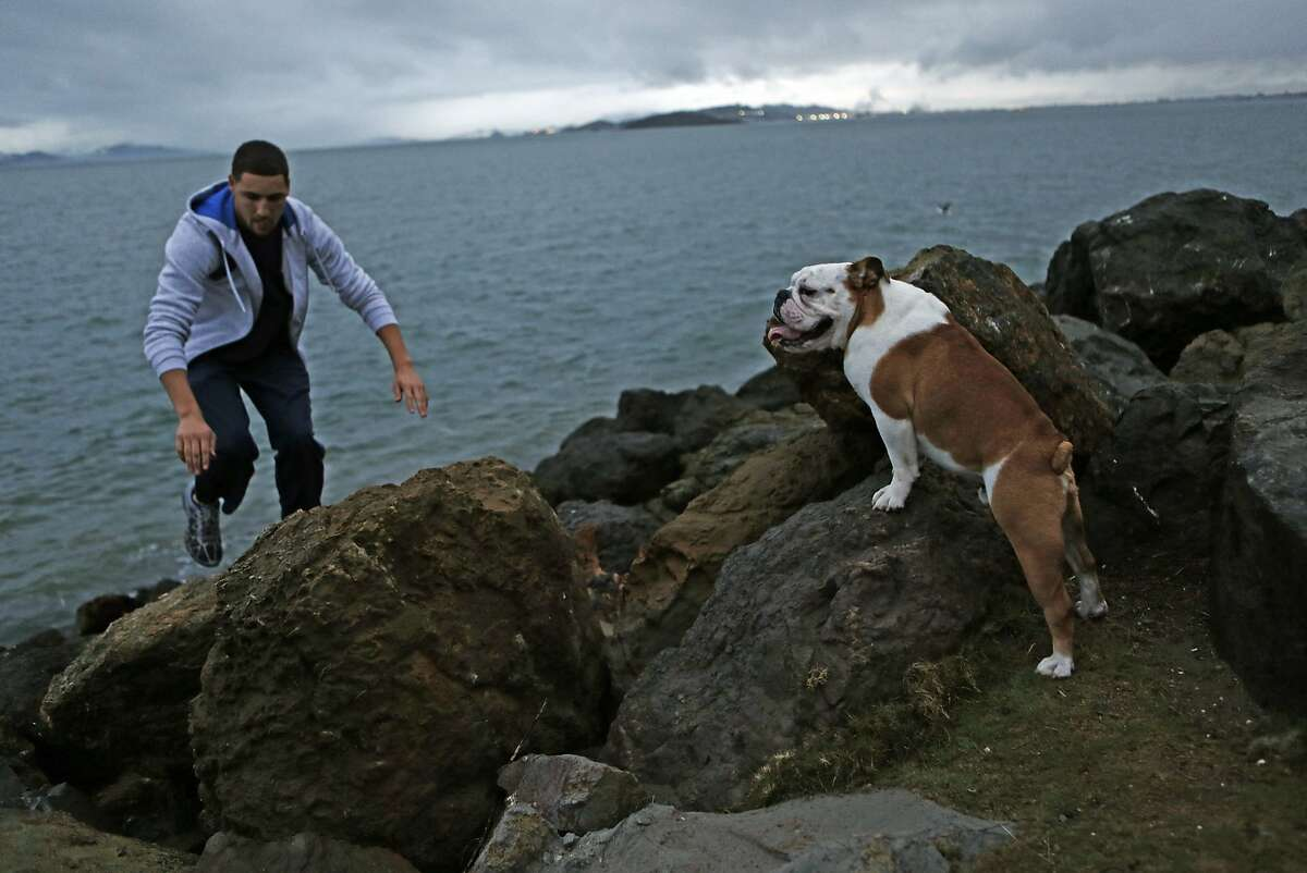 Golden State Warriors' Klay Thompson and his dog, Rocco, at Cesar Chavez Park in Berkeley, Calif., on Wednesday, November 19, 2014.