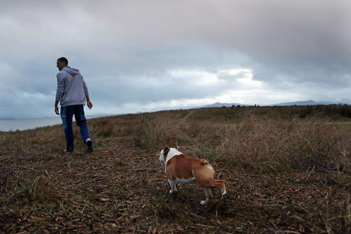 Golden State Warriors' Klay Thompson walks his dog, Rocco, at Cesar Chavez Park in Berkeley, Calif., on Wednesday, November 19, 2014.