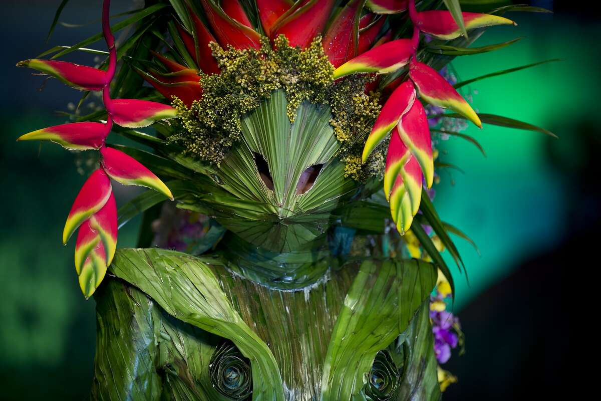 IT GROWS ON YOU: This creation by Colombian designer Juan Pablo Garzon for the BioFashion show in Cali, Colombia, should be watered twice a day.