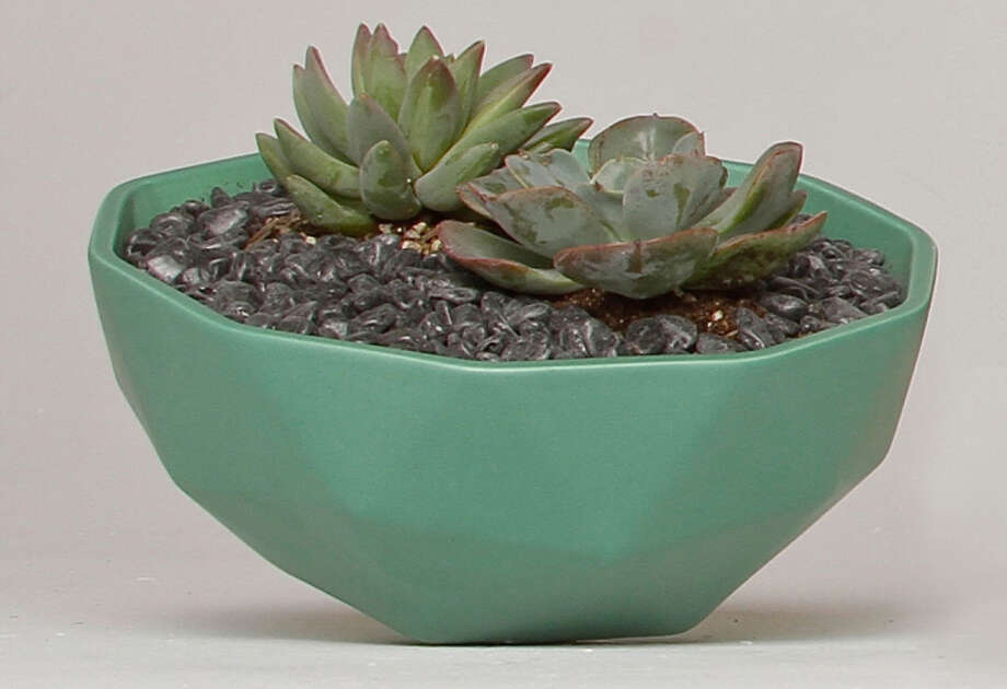 """Museum of Craft and Design: The museum store stocks a unique selection of glass, ceramic, wood and paper products made by established, emerging and student artists based in the Bay Area and beyond. It's basically handmade heaven.  Curator's pick: Large Geo planter, a faceted green glazed ceramic bowl by Kelly Lamb of Los Angeles that can be used for a centerpiece filled with fruit, flowers or foliage ($130). """"My focus is on versatile handmade objects that will make great gifts for the holiday table,"""" says curator Zahid Sardar. 2569 Third St., San Francisco; (415) 773-0303; www.sfmcd.org. 11 a.m.-6 p.m. Tues.-Wed.,  11 a.m.-7 p.m. Thurs., 11 a.m.-6 p.m. Fri.-Sat., noon-5 p.m. Sun. Closed Christmas Day. Photo: Courtesy MCD / ONLINE_YES"""