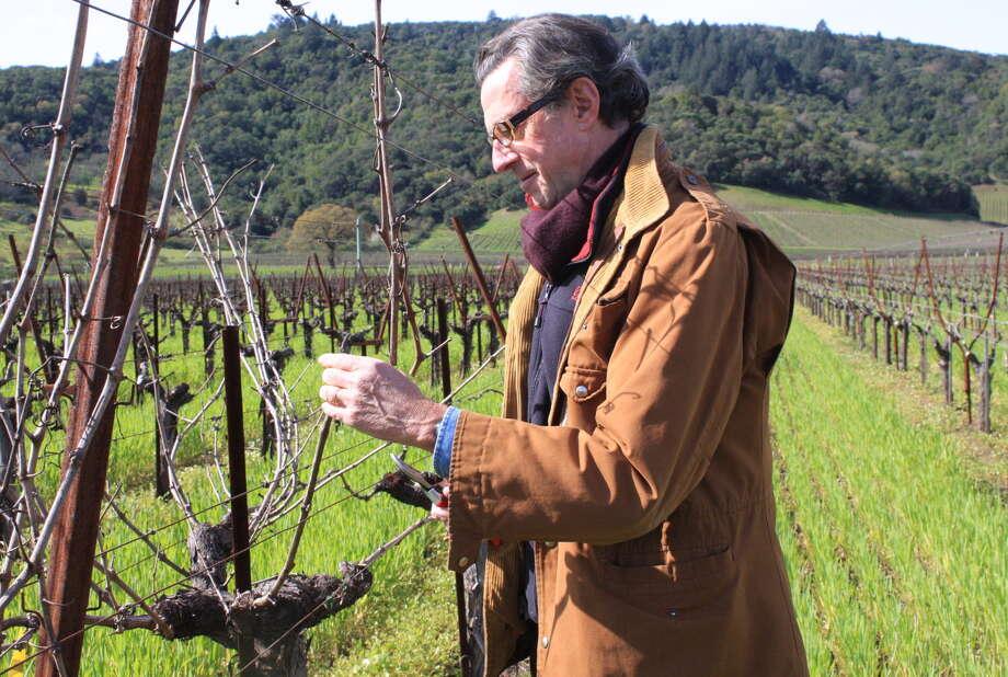 Dominus proprietor Christian Moueix prunes Cabernet vines in his vineyard in Yountville. Moueix also owns Chateau Petrus, source of arguably Bordeaux's most valuable wine. Photo: Jon Bonne / The Chronicle