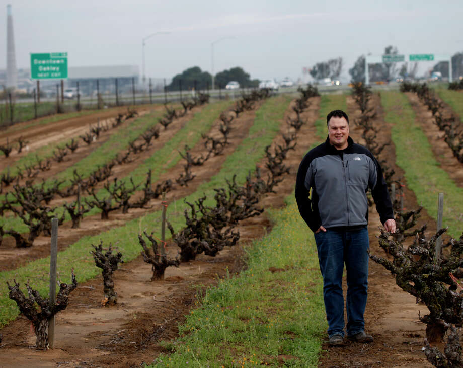 Under his Sandlands label, Tegan Passalacqua has become one of Chenin Blanc's greatest defenders in California. Photo: Lacy Atkins / The Chronicle / ONLINE_YES