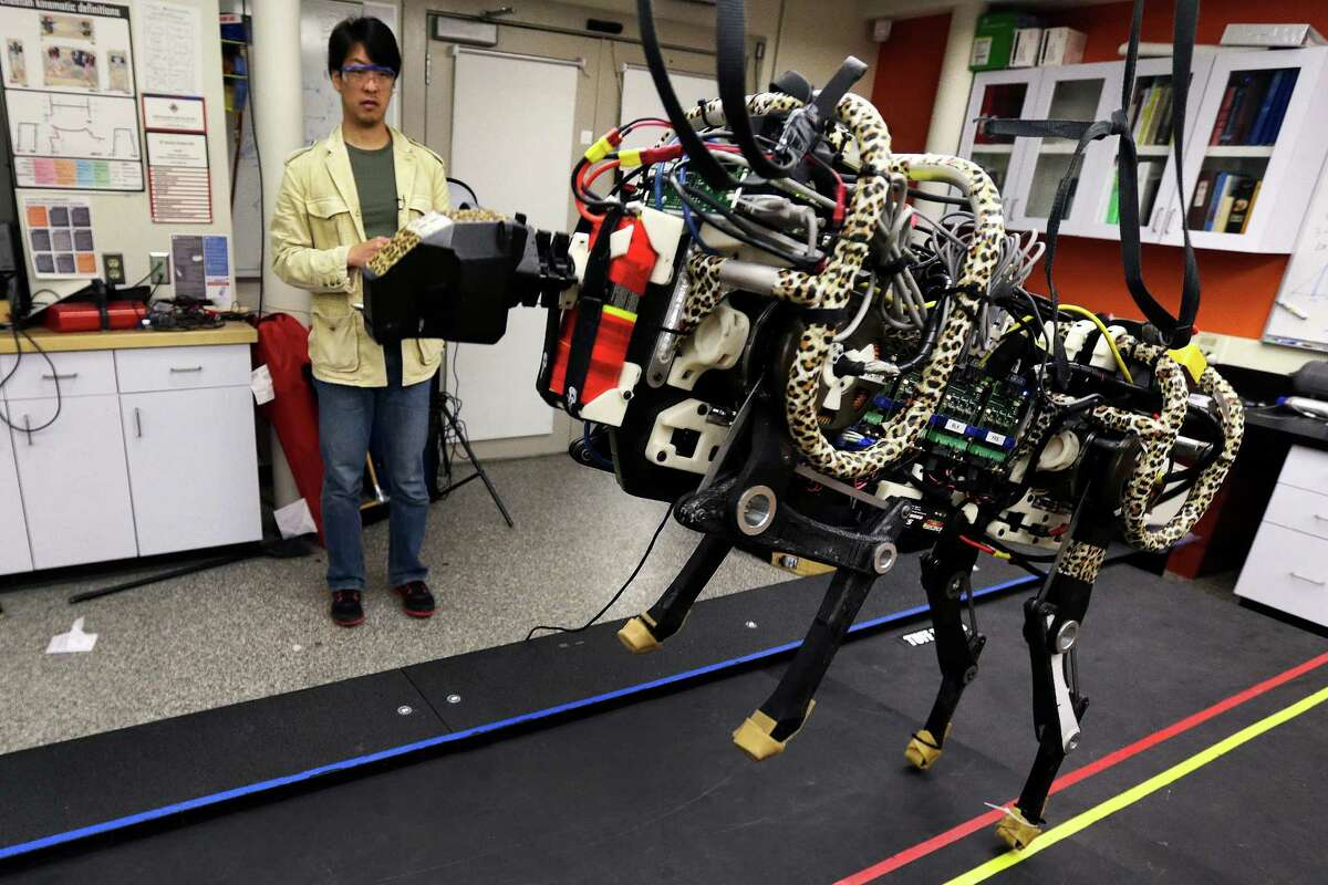 3. Massachusetts Institute of Technology Pictured: Professor Sangbae Kim controls a robotic cheetah on a treadmill at the Massachusetts Institute of Technology in Cambridge. MIT scientists say the robot, modeled after the fastest land animal, may have real-world applications.