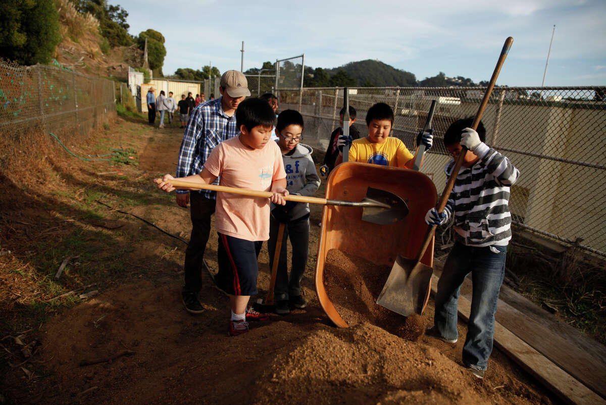 Zhi Long (rear, left) supervises Herbert Hoover Middle School sixth-graders as they dump a wheelbarrow full of dirt as they work on the Hawk Hill Restoration Project that aims to (Tony) Huang (left), intern supervises Herbert Hoover Middle School sixth graders Eric Yu (second from left); Daniel Li (second from right) and Francis Bonifacio (right), 11 as they dump a wheel barrel full of dirt on a pile while working at the Hawk Hill Restoration Project on Wednesday, November 12, 2014 in San Francisco, Calif.