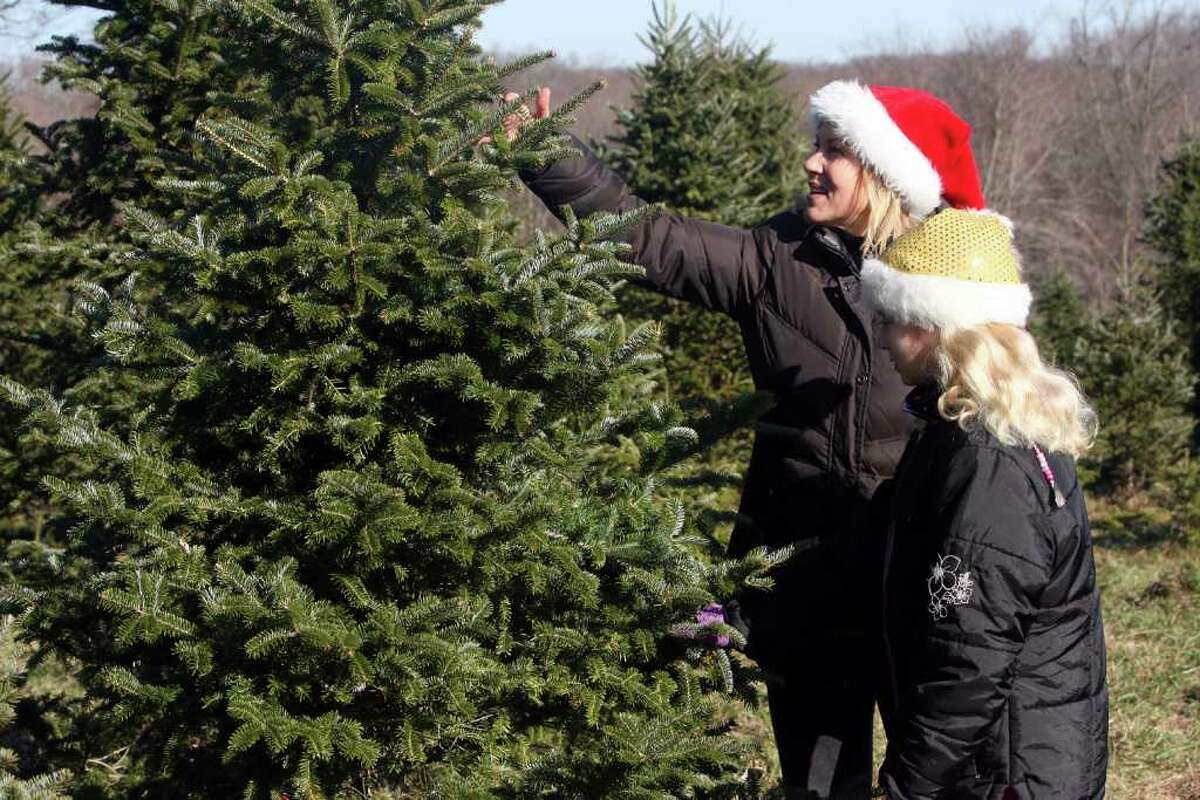 Chop down your own tree Feel rugged by heading out to a local tree farm, ax in hand, to pick the perfect tree. Maple Row Farm, EastonJones Family Farms, SheltonH. Smith Richardson Wildlife Preserve and Christmas Tree Farm
