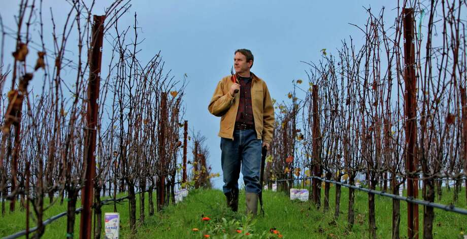 Ted Lemon of Littorai Wines strides through his Sebastopol vineyards. For decades, he has sought to define great Pinot Noir in a uniquely Californian context. Photo: Lacy Atkins / The Chronicle / SFC