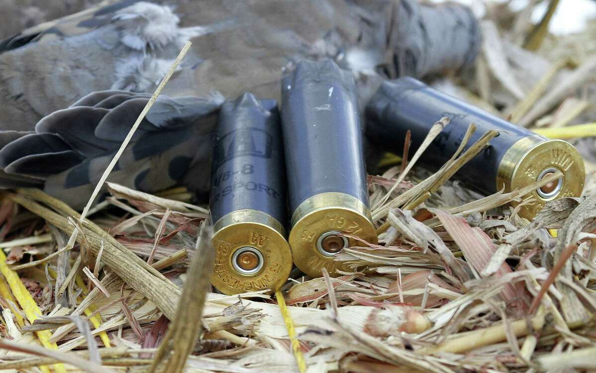 A Texas study indicates shotshells loaded with non-toxic steel pellets are just as effective at taking doves as shotshells loaded with lead pellets.