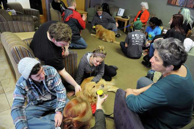 Shelby, a female golden retriever, owned by Emily Lee, right, gets and gives attention to students Kylie Canavan, Brian Lee, Nick Dreslinski and Natalie Frontiero, center, during an end-of-semester stress relief session for students at the College of Saint Rose  Thursday, Dec. 4, 2014, in Albany, N.Y. Therapy dogs and make-your-own sundaes are offered to students to help reduce stress while studying for their final exams, which begin Tuesday, Dec. 9.   (Michael P. Farrell/Times Union) Photo: Michael P. Farrell / 00029731A
