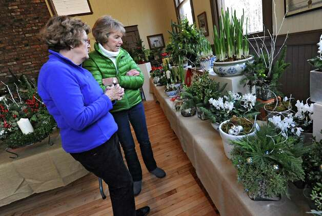 Members of the Fort Orange Garden Club Carol Fitzgerald of Loudonville, left, and Barb Hoehn of Menands look over some of the plants Thursday, Dec. 4, 2014, as they set up for their Holiday Greens Sale which takes place this Friday and Saturday at the Pruyn House Schoolhouse in Colonie, N.Y. (Lori Van Buren / Times Union) Photo: Lori Van Buren / 00029675A