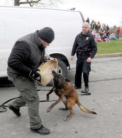 K9 dog Jeter , a 9 year old Belgian Malinois, attacks pretend perpetrator Jerry Oliver, Cohoes Animal Control Officer, as Jeter and K9 Officer Sean Mckown put on a demonstration at Harmony Hill Elementary School during a unveiling of the City of Cohoes new 2015 Ford Explorer K9 Unit on Friday Dec. 5, 2014 in Cohoes, N.Y.  (Michael P. Farrell/Times Union) Photo: Michael P. Farrell / 00029762A