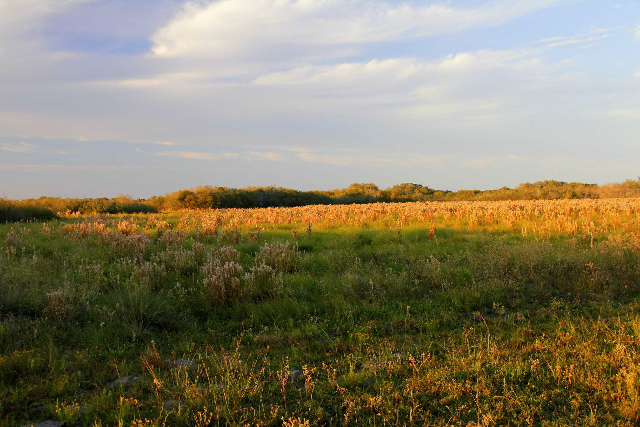 Powderhorn Ranch - Beaumont Enterprise