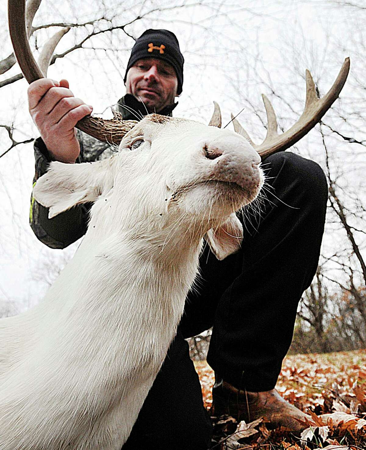 In this Dec. 2, 2014 photo Jerry Kinnaman holds up a rare 10-point albino buck he shot with a bow and arrow in Missouri's Cape Girardeau County. Kinnaman said Friday, Dec. 5, that he feels the heat for killing the deer but doesn't regret his actions. (AP Photo/The Southeast Missourian, Laura Simon)