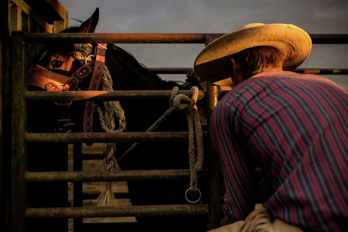 July 3 - Evening light catches the eye of a horse at the Sedro-Woolley Riding Club Rodeo. The rodeo is one of the annual events celebrating the