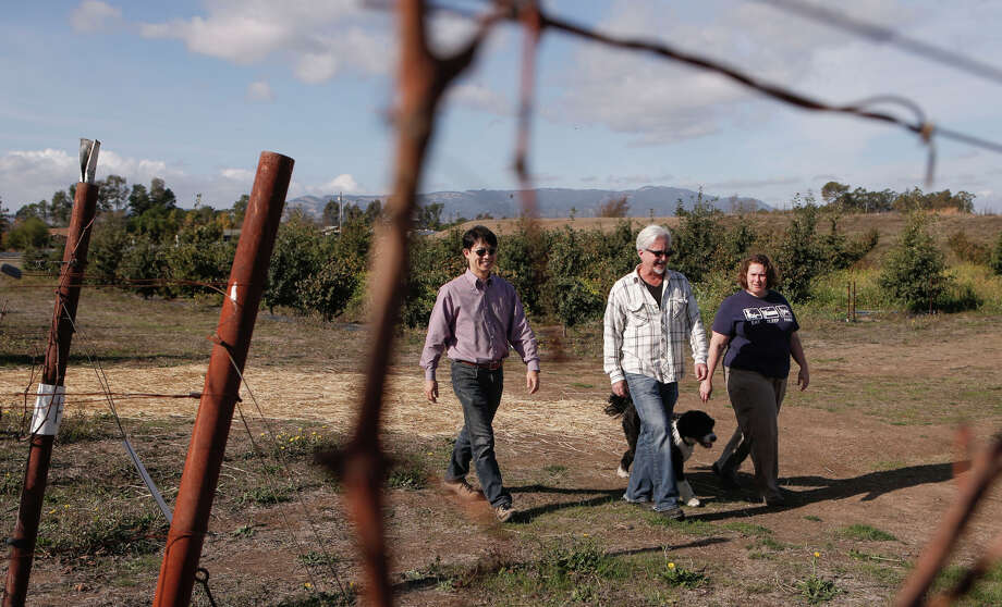 Robert Sinskey (center), American Truffle Co.'s Robert Chang and vineyard manager Debby Zygielbaum, with Sinskey's dog, Paolo, walk through Sinskey's Sonoma vineyard, where the vintner has converted 1½ acres to a truffle orchard. Photo: Michael Macor / The Chronicle / ONLINE_YES