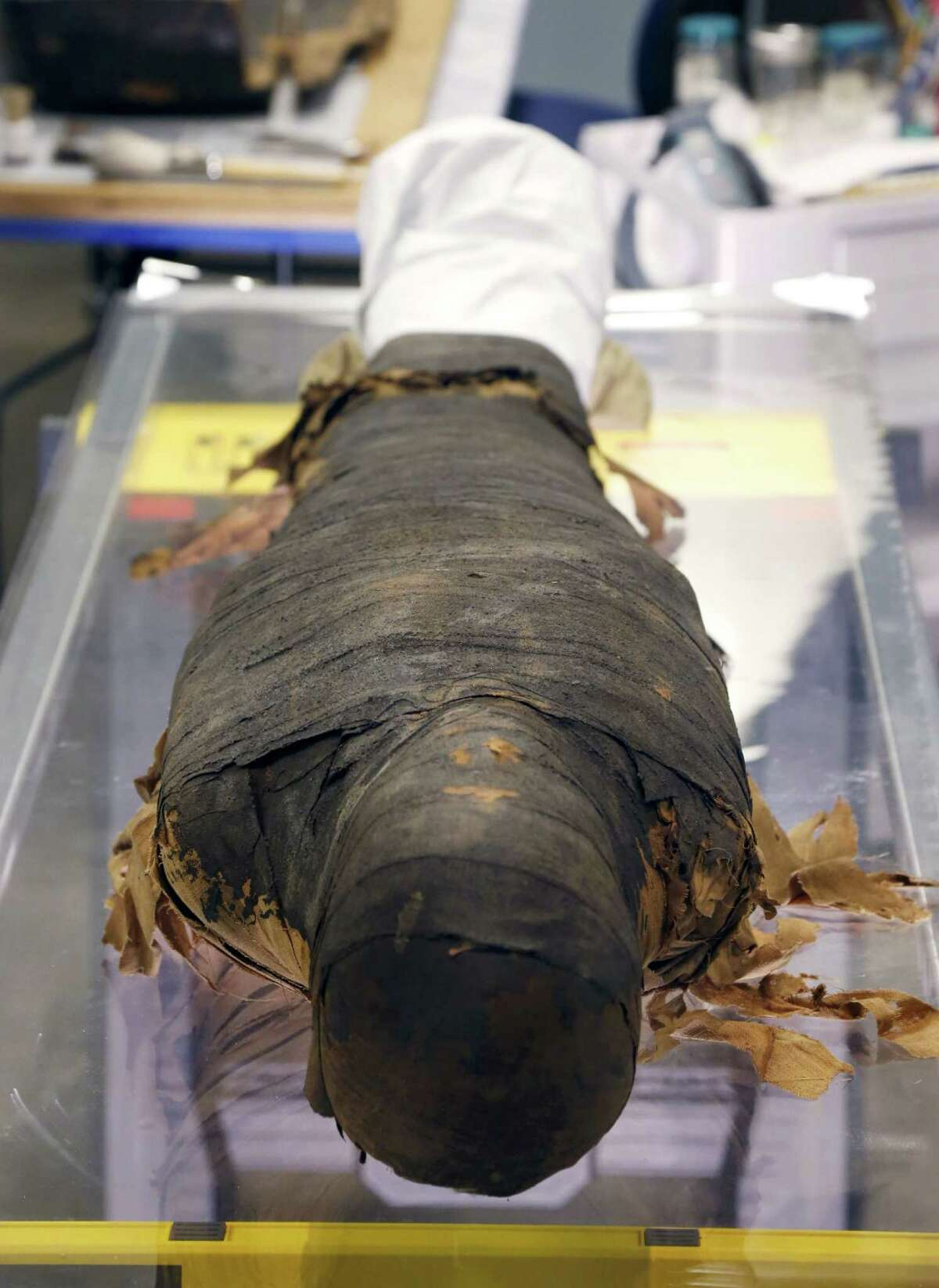 The mummified body of Minirdis, a 14-year-old Egyptian boy who was the son of a priest, lies on a glass table during the conservation process conducted by JP Brown, Regenstein Conservator, at the Field Museum, Wednesday, Dec. 10, 2014, in Chicago. Brown and his team opened the coffin of the 2,500-year-old mummy to perform conservation work before it becomes part of a traveling exhibition.