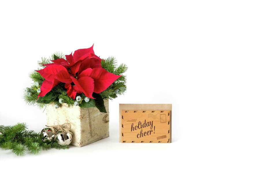 One of BloomThat's seasonal offerings, a poinsettia mix in a rustic birch box plus a wood, laser-cut holiday card. www.bloomthat.com Photo: BloomThat / ONLINE_YES