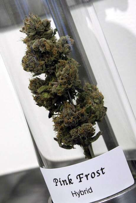 The ruling will let marijuana be grown and sold by Indians under certain conditions. Photo: Don Ryan, STF / AP