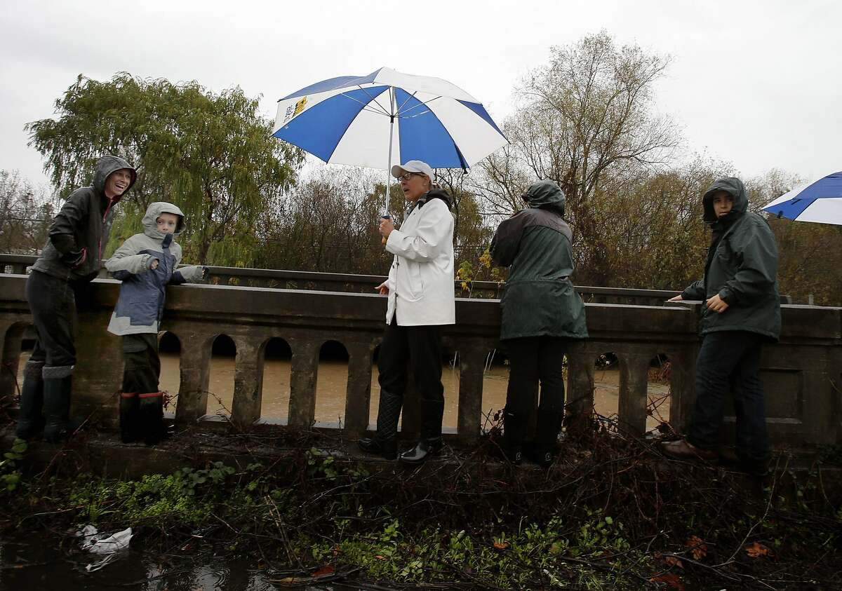 A group of people watched the rising Bailey Creek in Petaluma, Calif. which ultimately shut down Stoneypoint Road. The big storm hit the North Bay first with rain and wind beginning in the overnight hours Thursday December 11, 2014.