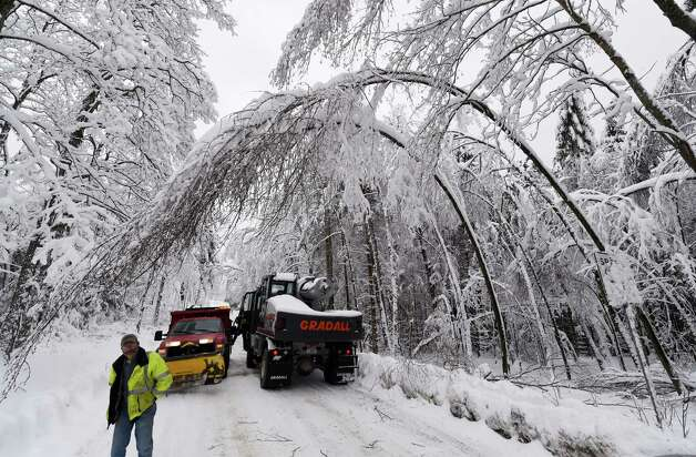 Duanesburg equipment operator Stephen Ash surveys the low hanging branches due to the heavy snow load Thursday afternoon on Turnbull Road Dec. 11, 2014 in Duanesburg, N.Y.    (Skip Dickstein/Times Union) Photo: SKIP DICKSTEIN