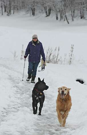 Linda London of Albany walks her dogs Seeger, left, and Lucha at Capital Hills at Albany on Thursday, Dec. 11, 2014 in Albany, N.Y. (Lori Van Buren / Times Union) Photo: Lori Van Buren