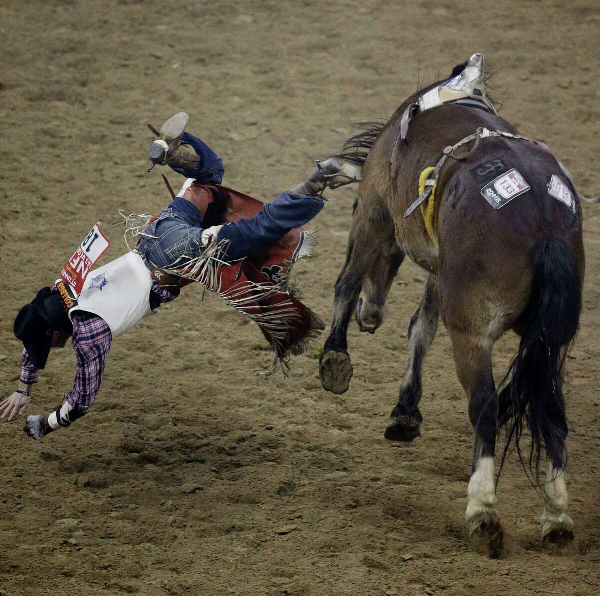 Tim O'Connell from Zwingle, Iowa, gets thrown from his horse in the bareback riding event during the eighth go-round of the National Finals Rodeo Thursday, Dec. 11, 2014, in Las Vegas.
